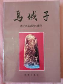 马城子:太子河上游洞穴遗存