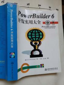 PowerBuilder 6开发实用大全