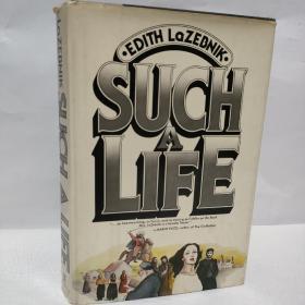 LAZEBNIK SUCH A LIFE 拉兹布尼克就是这样的生活