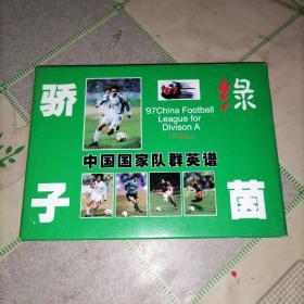 绿茵骄子 中国国家队群英谱 珍藏版明信片全12张