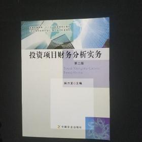 投资项目财务分析实务(第二版)