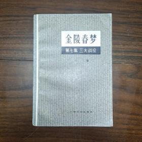 金陵春梦第七集 三大战役