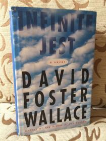 Infinite Jest by David Foster Wallace -- 华莱士《无尽的玩笑》