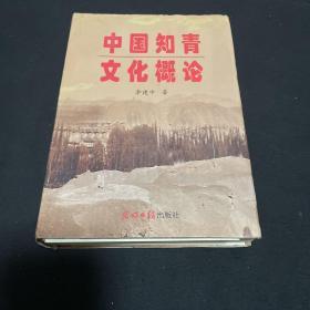 中国知青文化概论(作者签赠本、内附作者集体照片一张)如图