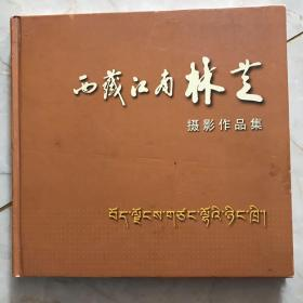 西藏江南林芝
