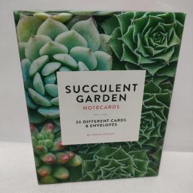 succulent garden多汁花园 明信片
