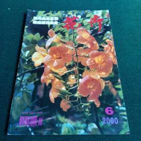 花卉 2000年6月