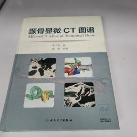 颞骨显微CT图谱
