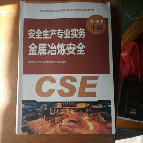 2019版中级安全生产专业实务金属冶炼安全