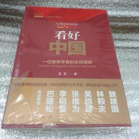看好中国 一位智库学者的全球演讲(王文看世界系列3)