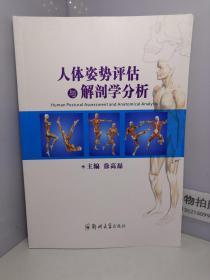 人体姿势评估与解剖学分析