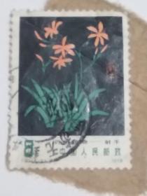 """T30《药用植物》信销散邮票5-3""""射干"""""""