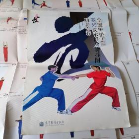 全国中小学生系列武术健身操挂图 功夫青春 单操1.2 对操1.2.3.4 6张合售