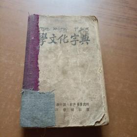 学文化字典