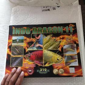印尼神龙 11:INDO DRAGON  (画册)