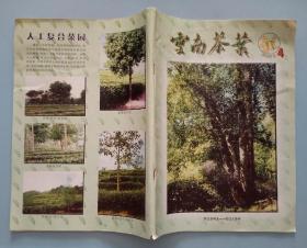 云南茶叶2003年第4期