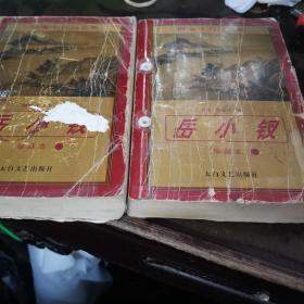 岳lh钗,珍藏本(上下)册