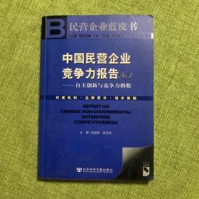 中国民营企业竞争力报告NO3:自主创新与竞争力指数