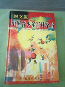 21世纪中国青少年百科全书  文化卷