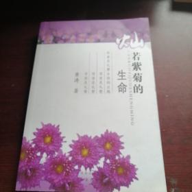 灿若紫菊的生命