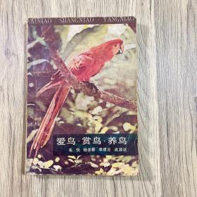 爱鸟 赏鸟 养鸟