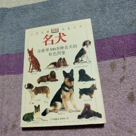 新编中国哲学史    封面及侧页有大头笔图画情况