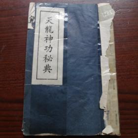 天龙 神功秘典(卷三伤解药功)