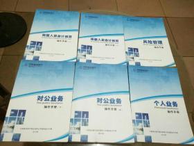中国建设银行:对公业务操作手册(上下)、柜台人员会计核算操作手册(上下)、个人业务操作手册、风险管理操作手册(6册合售)