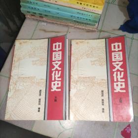 中国文化史(上下册)实物图