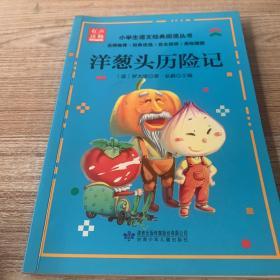 小学生语文经典阅读丛书:洋葱头历险记(美绘插图)