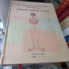 汉藏对照人体解剖学彩色图谱