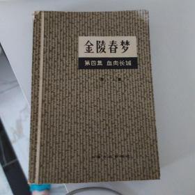 金陵春梦第四集