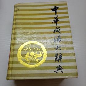 中华成语大辞典(缩印本)58A