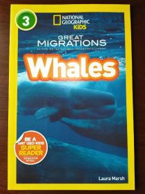 National Geographic Readers: Great Migrations Whales 【正版全新】