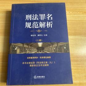刑法罪名规范解析(上册)
