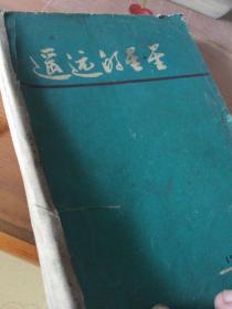 越南小说:遥远的星空