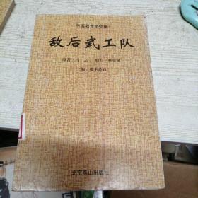 中华爱国主义文学名著文库 敌后武工队