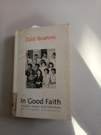 IN GOOD FAITH:ARTICLES,ESSAYS AND INTERVIEWS(诚信:文章、论文和访谈)