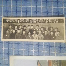 安徽省农业调查队贵池分队全队同志留影老照片