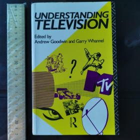 understanding  television history of leisure culture