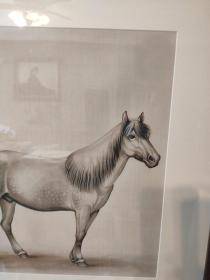 马晋  万里可横行 镜框65x65厘米 茶室书房挂画(实物拍 顺丰发)