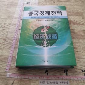 中国经济战略 (韩文)
