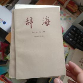 辞海:历史分册·中国近代史