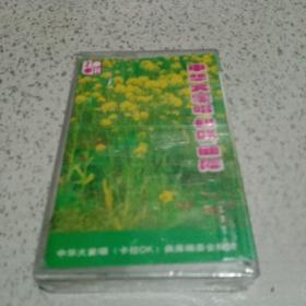 磁带:中华大家唱卡拉OK曲库【60】未开封