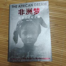 非洲梦:探索现代化之路
