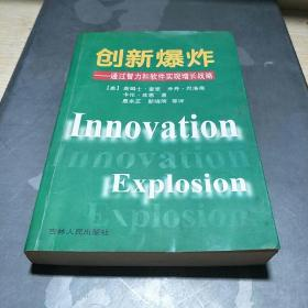 创新爆炸:通过智力和软件实现增长战略