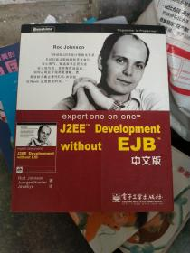 expert one-on-one J2EE Development without EJB 中文版
