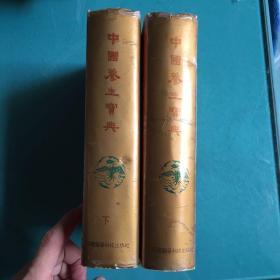 中国养生宝典(上下)(外95品内如新,书口有黄渍)