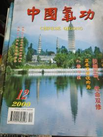 中国气功 2000年第12期