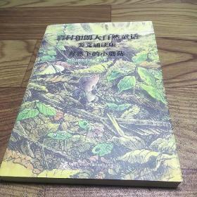 月亮下的小蘑菇:岩村和朗早安大自然童话(美文诵读版)
